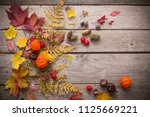 red berriaes and  autumn leaves ... | Shutterstock . vector #1125669221