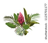 tropical flowers  palm leaves ... | Shutterstock .eps vector #1125701177