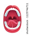 oral cavity. human open mouth... | Shutterstock .eps vector #1125746711
