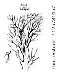 deer and tree silhouette vector.... | Shutterstock .eps vector #1125781457