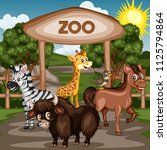 vector illustration of a zoo... | Shutterstock .eps vector #1125794864