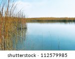 reeds on the bank of a calm lake | Shutterstock . vector #112579985