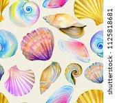 Colorful Large Seashells...