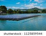 floating solar farm or solar... | Shutterstock . vector #1125859544