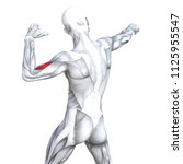 concept conceptual 3d... | Shutterstock . vector #1125955547