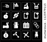 set of 16 icons such as body ...
