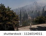 Small photo of Volunteer extinguish a forest fire on eastern suburbs of Athens, Greece on July 17, 2015