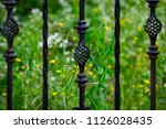 wrought iron gates  ornamental... | Shutterstock . vector #1126028435