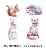 Watercolor Hare  Hedgehog ...