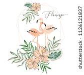 tropical blush pink flamingo... | Shutterstock .eps vector #1126121837
