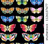 butterfly watercolor... | Shutterstock . vector #1126137677