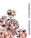 peony flower illustration vector   Shutterstock .eps vector #1126149431