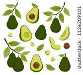 set of avocado illustrations... | Shutterstock .eps vector #1126209101