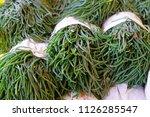 green samphire sea bean...   Shutterstock . vector #1126285547
