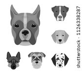 dog breeds monochrome icons in... | Shutterstock .eps vector #1126338287