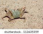 land crab on the beach | Shutterstock . vector #112635359