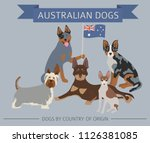 dogs by country of origin.... | Shutterstock .eps vector #1126381085
