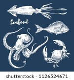 seafood and fish sketch... | Shutterstock .eps vector #1126524671