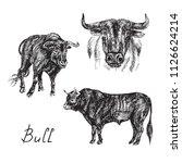 Black Bull Set  Hand Drawn Ink...