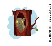 cute owlet sitting in hollow of ... | Shutterstock .eps vector #1126669271