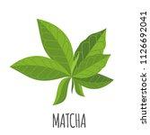 matcha vector logo in flat... | Shutterstock .eps vector #1126692041