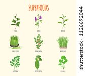 set of superfoods in flat style.... | Shutterstock .eps vector #1126692044