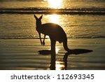 Silhouette Australian Eastern...