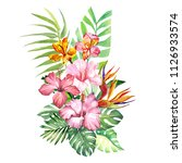 illustration with pink hibiscus....   Shutterstock . vector #1126933574
