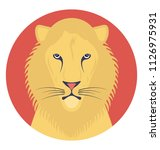 lions are social catas and live ... | Shutterstock .eps vector #1126975931