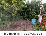 male farmer with hat  glasses ...   Shutterstock . vector #1127067881