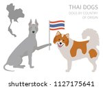 dogs by country of origin. thai ... | Shutterstock .eps vector #1127175641