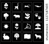 set of 16 icons such as wolf ...