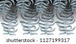 fern frond herbs  tropical... | Shutterstock .eps vector #1127199317