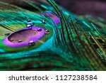 micro peacock feather hd image ... | Shutterstock . vector #1127238584