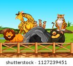 various animals in a zoo... | Shutterstock .eps vector #1127239451