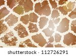 Colorful Animal Skin Textures...