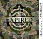 expired camo emblem | Shutterstock .eps vector #1127302439