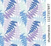 fern frond herbs  tropical... | Shutterstock .eps vector #1127357897