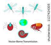 major vector borne transmittors ... | Shutterstock .eps vector #1127424305