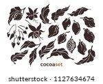 vector set of cocoa leaf  bean  ... | Shutterstock .eps vector #1127634674