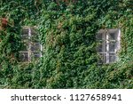 house with windows entwined... | Shutterstock . vector #1127658941