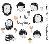 set of cute hedgehogs and... | Shutterstock .eps vector #1127687954