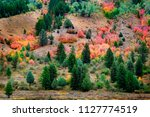 forest in mountains in autumn...   Shutterstock . vector #1127774519