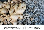 ginger on rocks... | Shutterstock . vector #1127984507