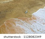 dead dolphin thrown out of the... | Shutterstock . vector #1128082349
