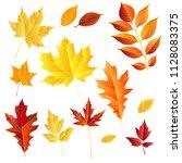 autumn leaves set  isolated on... | Shutterstock .eps vector #1128083375