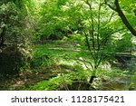 the natural river  bridge  tree ... | Shutterstock . vector #1128175421