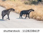 hyena on the move | Shutterstock . vector #1128238619