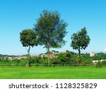 rural landscape with trees in...   Shutterstock . vector #1128325829