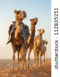 camel caravan going through the ... | Shutterstock . vector #112835251